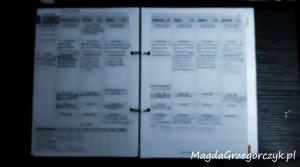 organizer-zapisany+zamazany